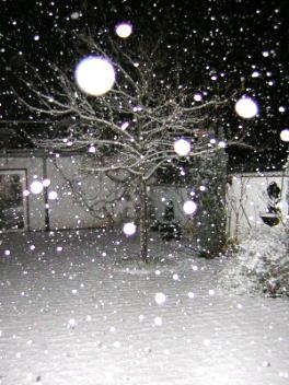schöna schnö